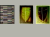 serie_bananenblatt_15x15_def-kopie